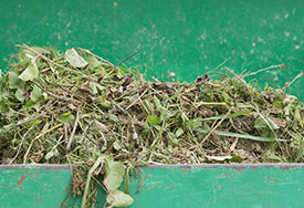 green-waste-img